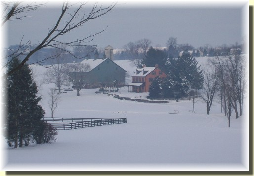 Meadowview Road Farm 1/30/11
