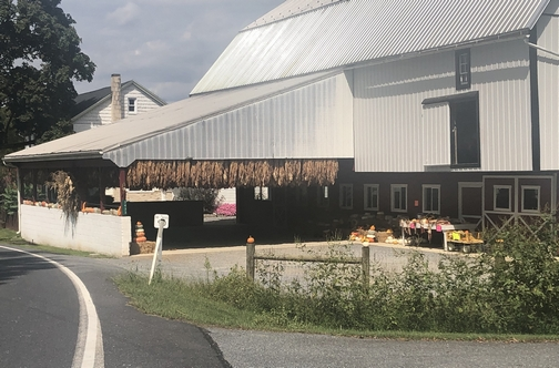 Meadow View Road farm 9/8/19