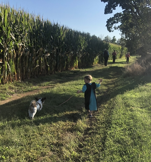 Meeting House Road walk, Lancaster County, PA 9/15/19