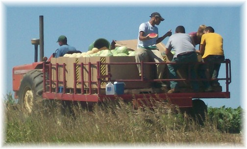 Lancaster County melon harvest 7/27/11