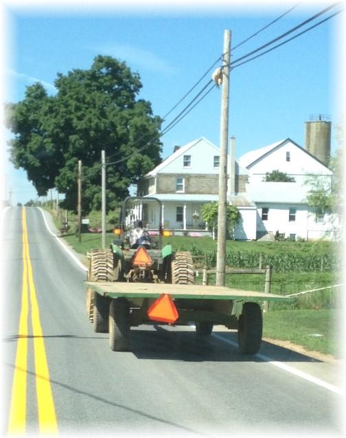 Mennonite farmer on tractor 7/23/15