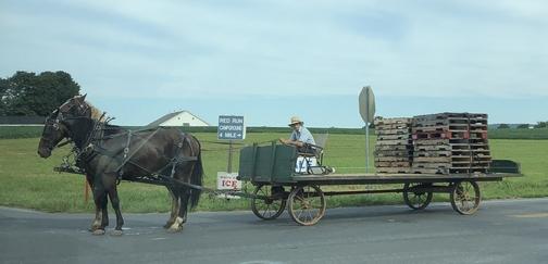 Mennonite wagon 9/5/19