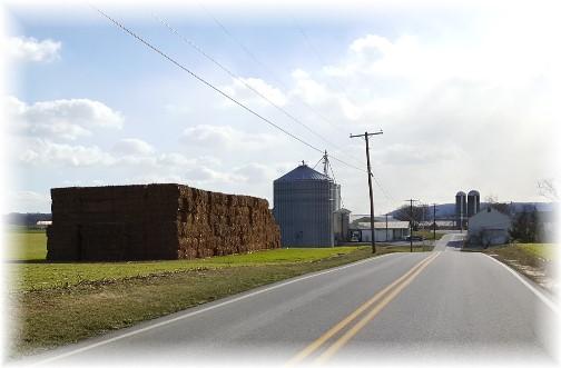 Musser Road farm scene 1/18/16