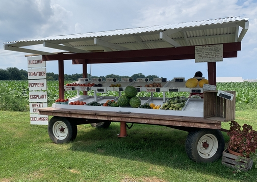 Neighborhood produce stand 8/6/19 Click to enlarge