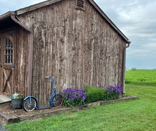 New Holland barn