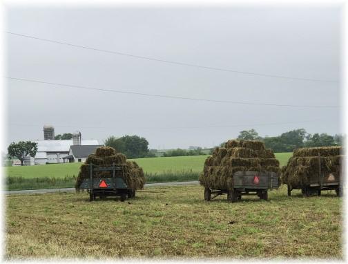 Hay wagons near New Holland, PA 5/31/18