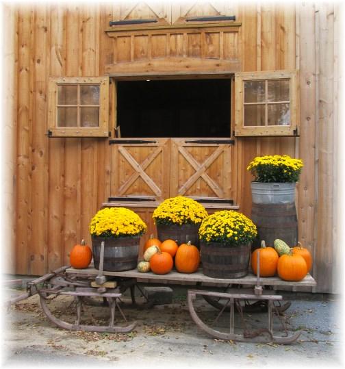Nolt Mill fall display 10/9/13