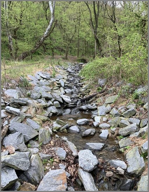 Brook near the Northwest River Trail