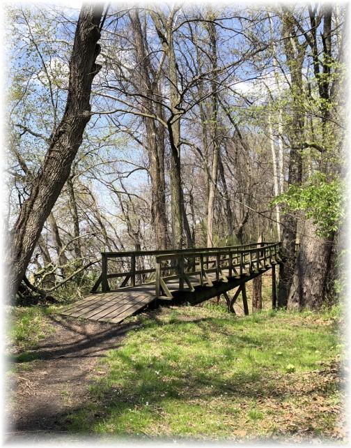 Old wooden bridge on undeveloped Northwest trail 4-28-18