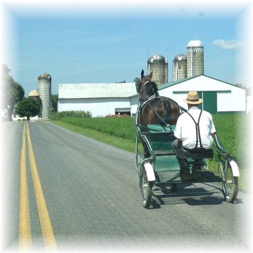 Old-order Mennonite cart 7/10/15