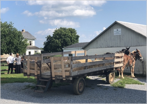 Old Windmill Farm hay wagon 8/9/18 (Click to enlarge)