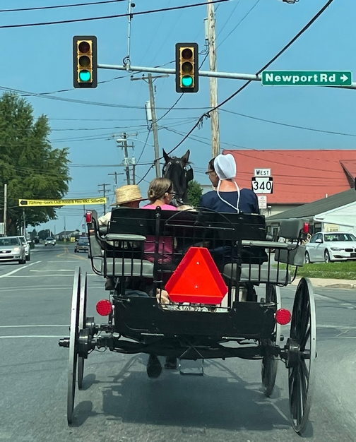 Buggy in Intercourse, PA