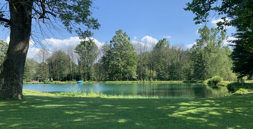 Peaceful pond 7/14/19 Click to enlarge