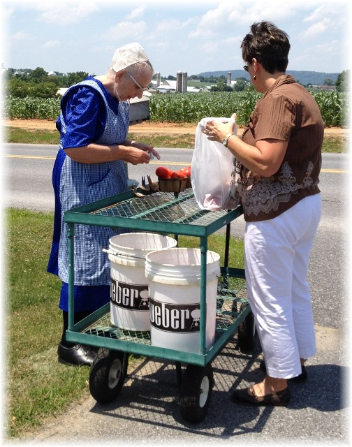Lancaster County roadside produce 7/2/14