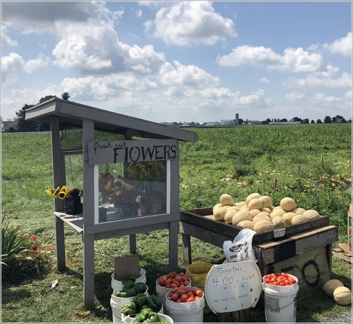New Holland area roadside stand 8/9/18 (Click to enlarge)