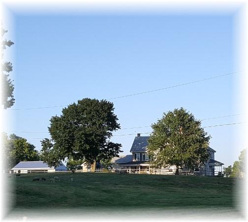 Rutt farm 9/1/16