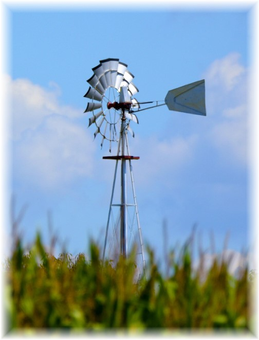Lancaster County windmill (Photo by  Shawn Sauerwine)