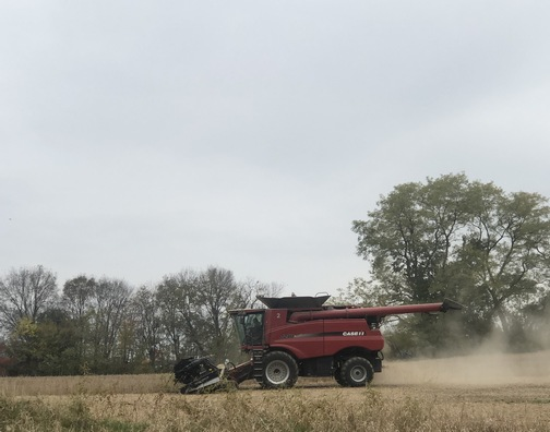 Soybean harvest, Lancaster County, PA 10/30/19