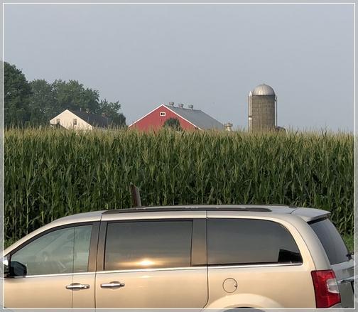 Strasburg farm 8/16/18