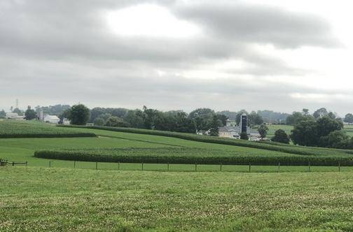 Strasburg Pike farm view