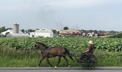 Scene in Lancaster County
