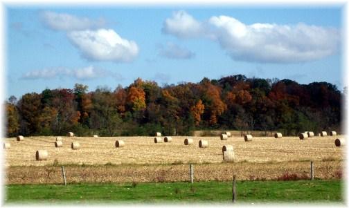 Sunnyside Road hay bales, Lancaster County, PA