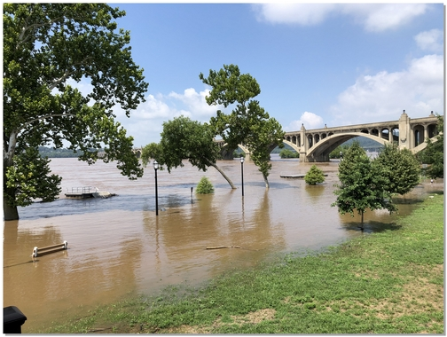 Susquehanna River flooding 7/26/18 (Click to enlarge)