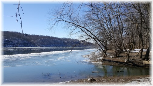 Susquehanna River, Lancaster County, PA 2/14/16 (Click to enlarge)