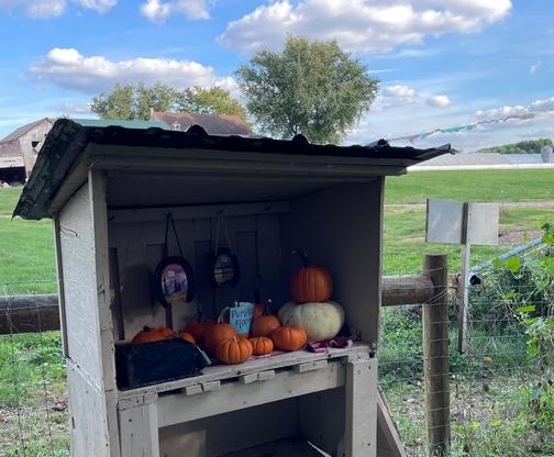 Lancaster Junction rail trail pumpkins