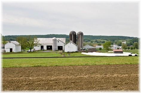 Verdant View farm before fire