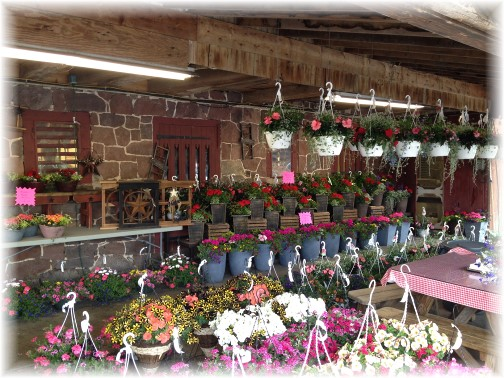Village Farm Market 5/1/15