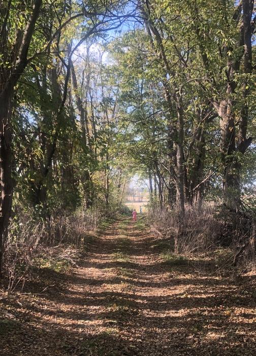 Children on trail