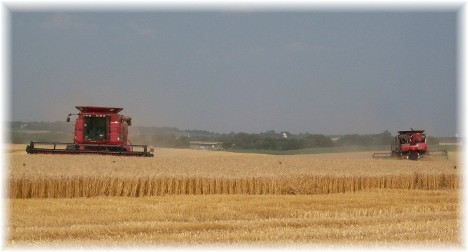 Combines at wheat harvest, Lancaster County PA