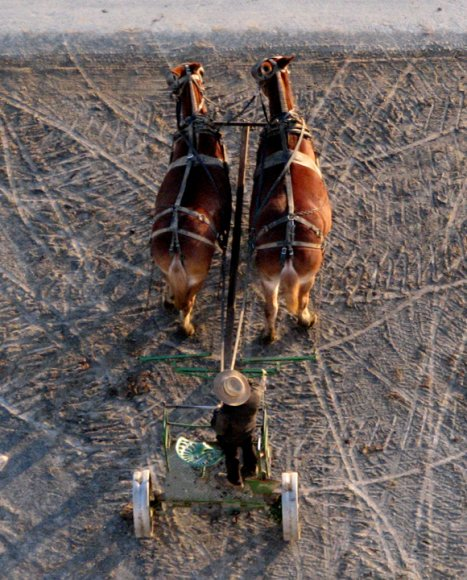 Amish cart (Photo by Debra Zimmerman)