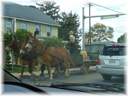 Amish farmer on Main Street in Intercourse, PA