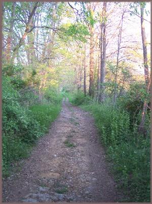 Meeting House Trail