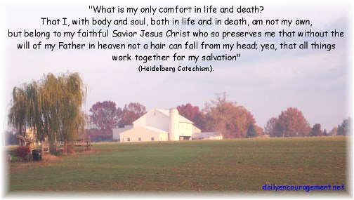 Morning farmview with faith statement