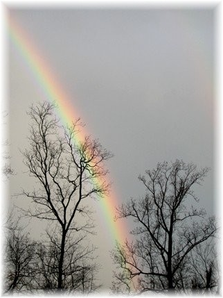 Rainbow (Photo by Doris High)