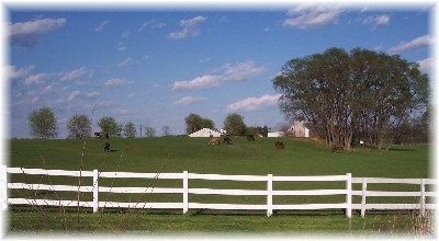 White fence and horse pasture