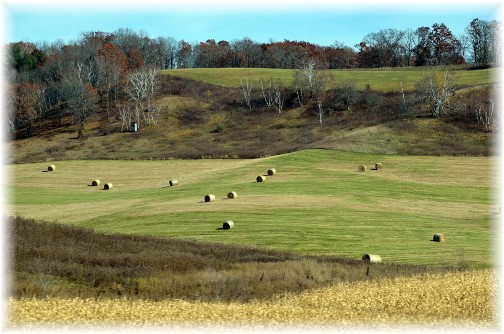 Wisconsin field (Photo by Doris High)