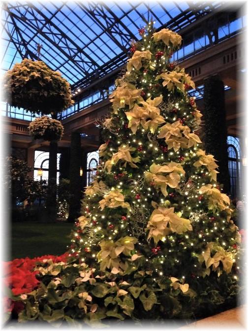 Longwood Gardens Poinsettia tree 12/19/14