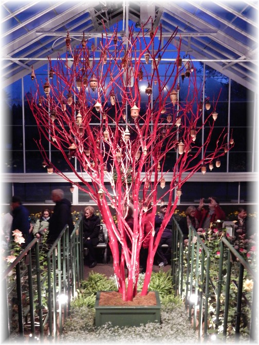 Red tree at Longwood Gardens 12/19/14