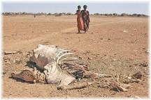 Somali drought 2011