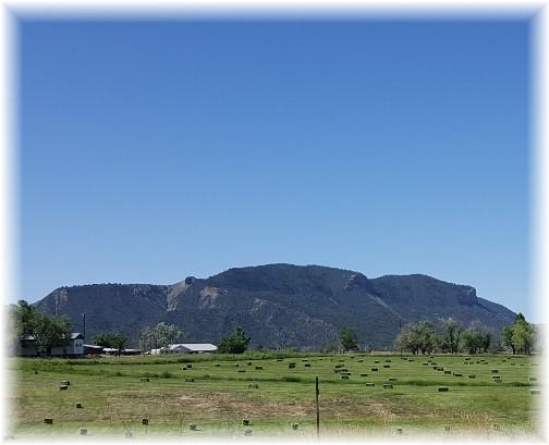 Weber Mountain Colorado 7/9/16