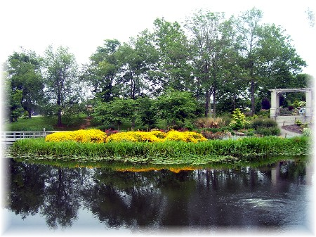 Pond at Creation Museum
