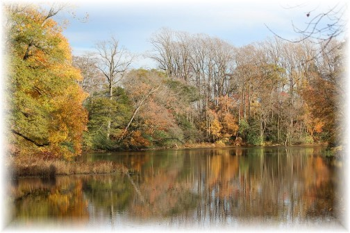 Fall foliage with pond in Delaware (photo by Duke)
