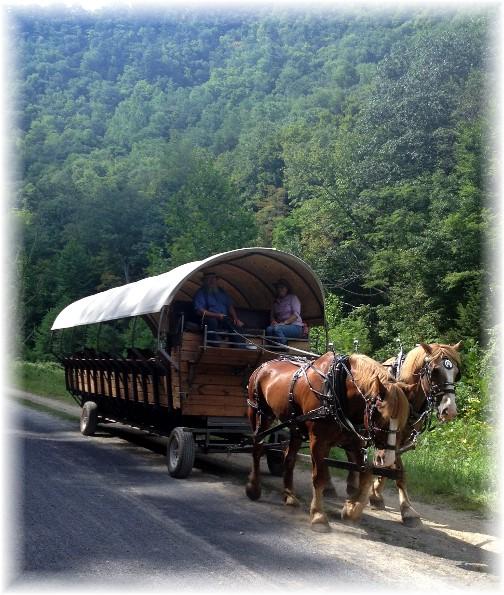 PA grand canyon rail trail 8/15/15