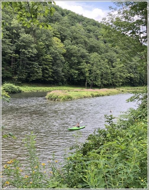 PA Grand Canyon kayaker in Pine Creek 7/29/18