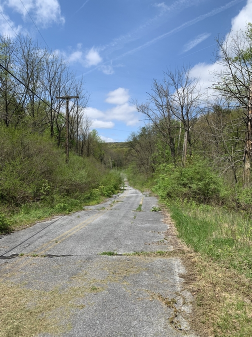 Abandoned highway in Swatara State Park, Lebanon County, 4/30/19