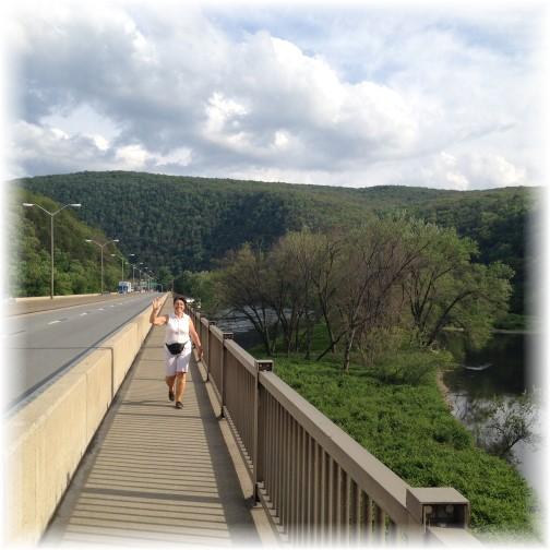 Appalachian Trail over I-80 5/28/15
